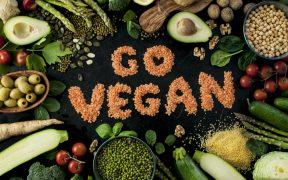 alimentação para veganos